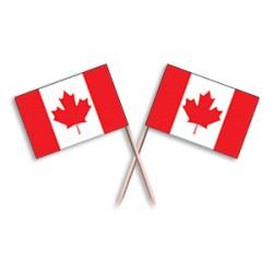 Scobitoare cu Stegulet  Canada